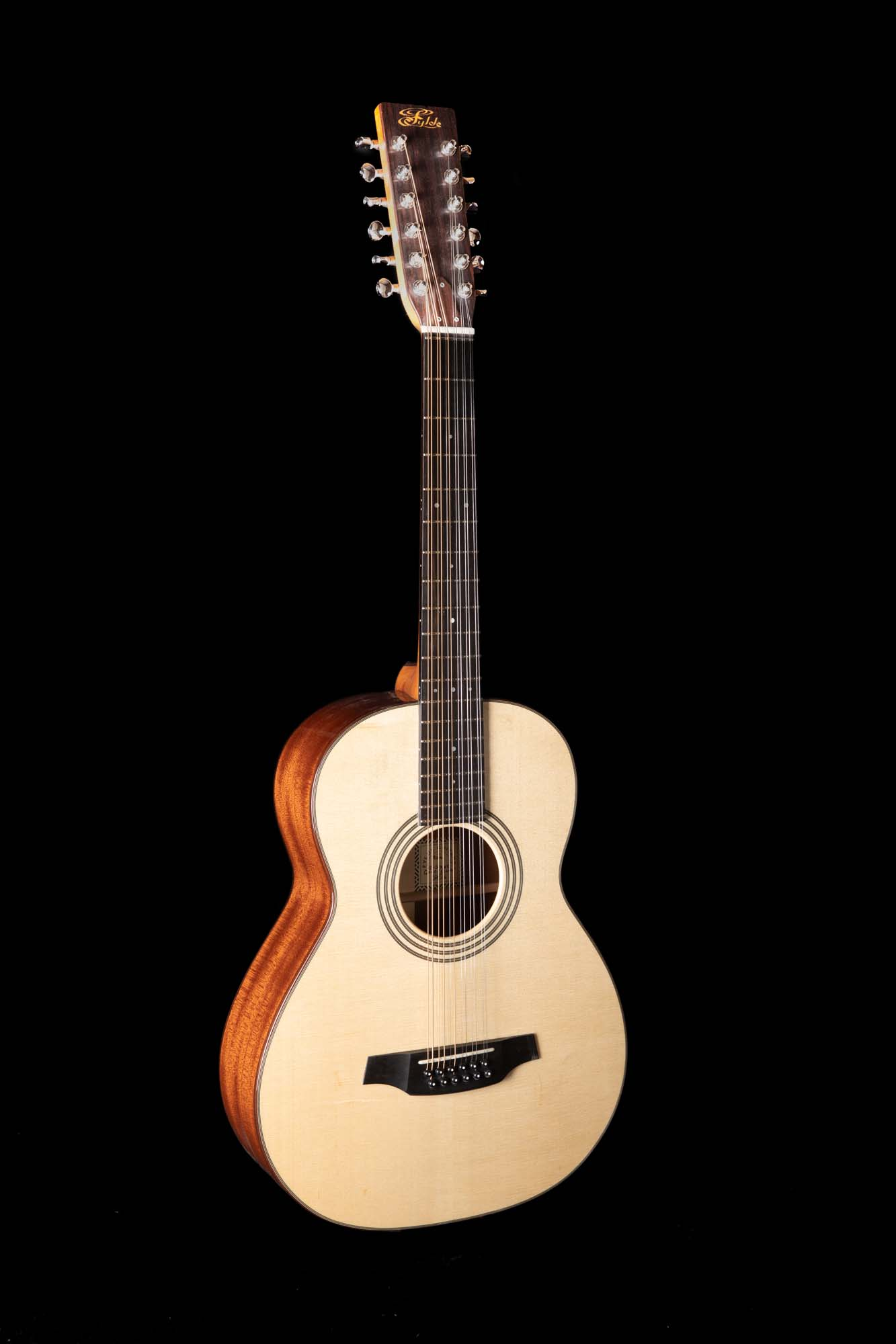 Goodfellow 12-String LC1A7987