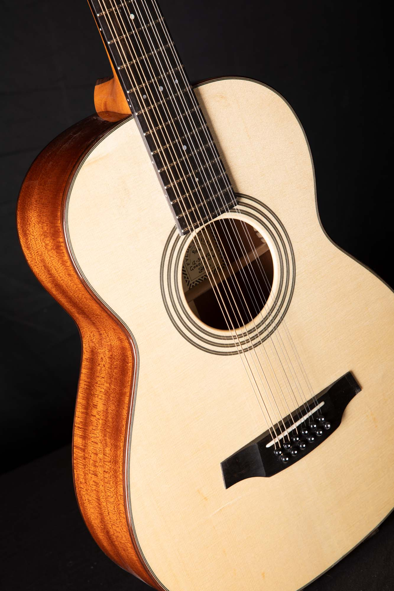 Goodfellow 12-String LC1A7989