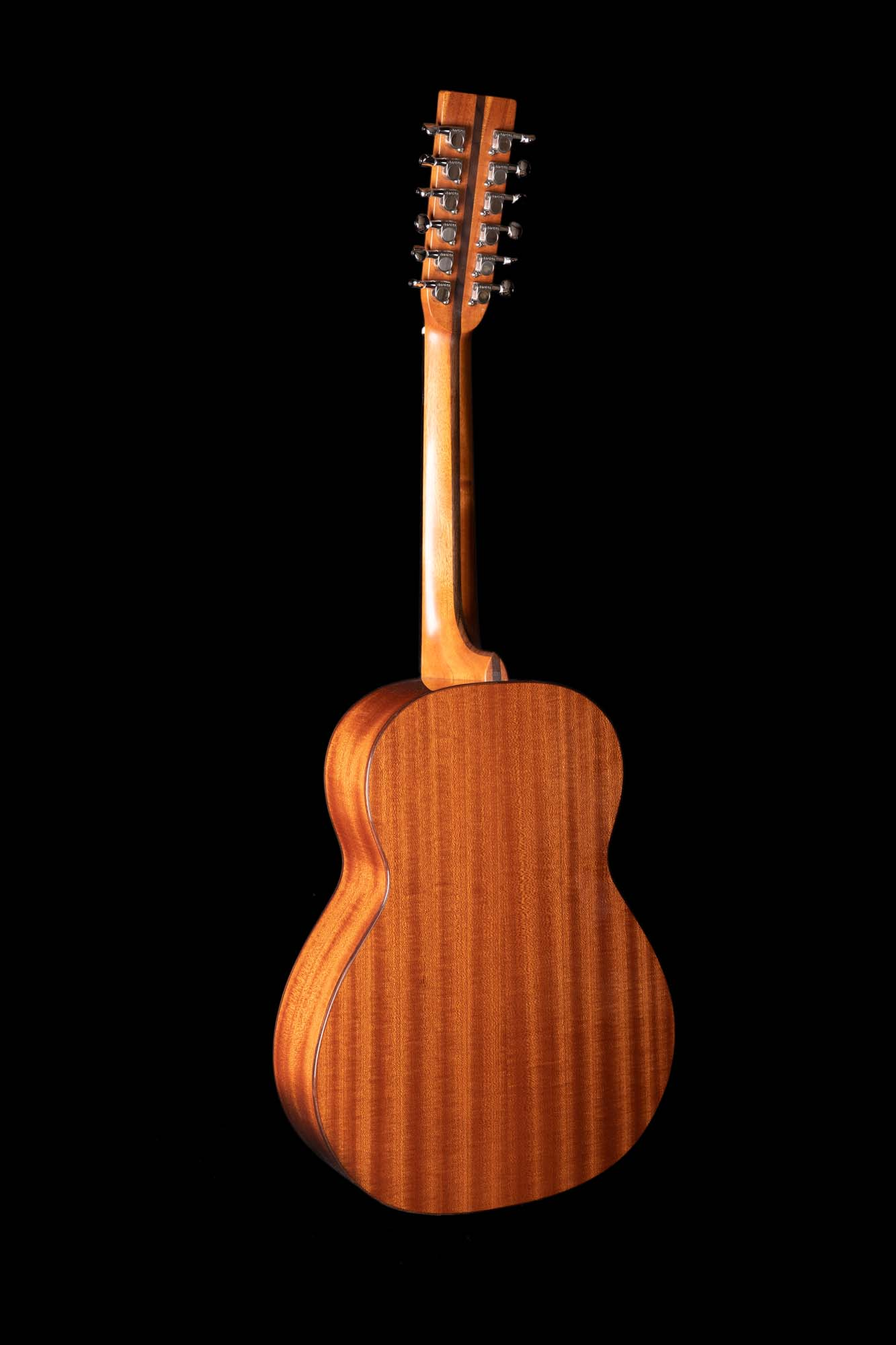 Goodfellow 12-String LC1A7995
