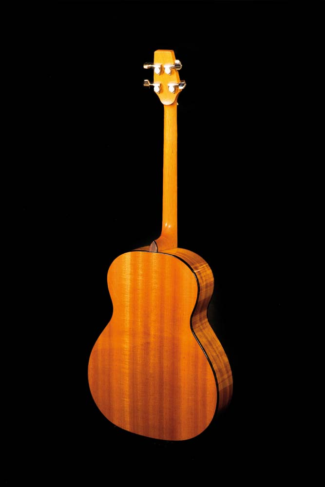 Tenor Guitar Back